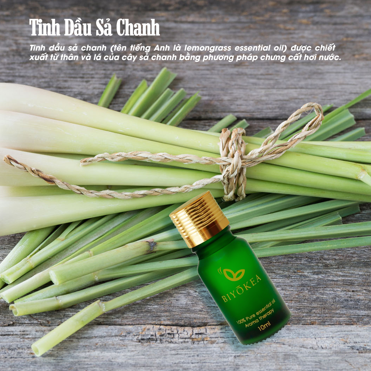 sa chanh 10ml 2